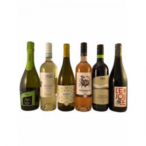 Organic Wine Tasting Case
