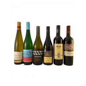Wine Tasting Terri's Selection